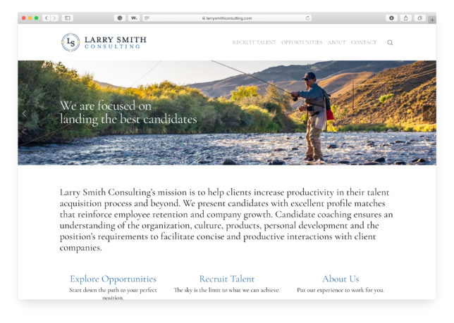 Larry Smith Consulting - Website